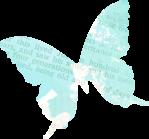 dreams_butterfly1