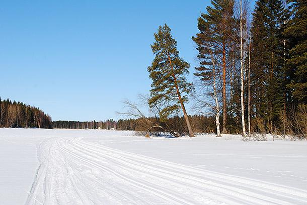 talvi2013_1