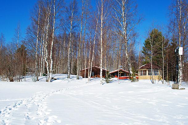 talvi2013_2