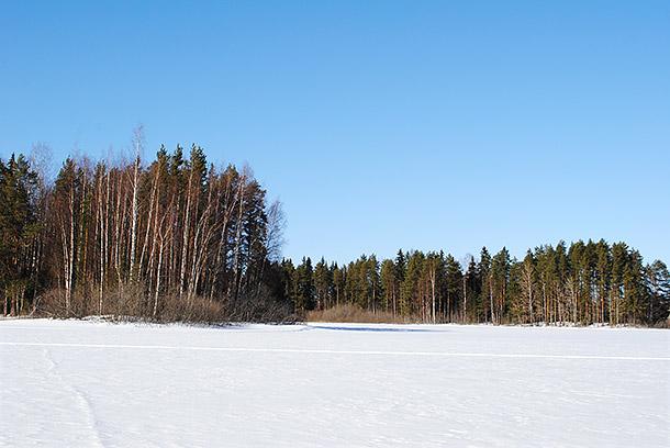 talvi2013_9