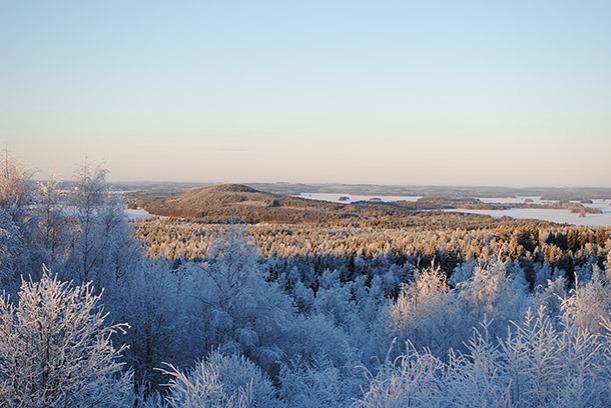 winter2014_01