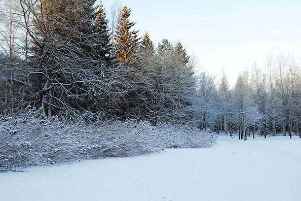 winter2014_03