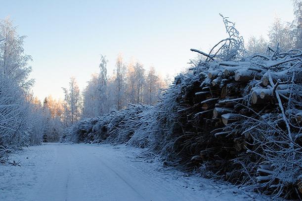 winter2014_08