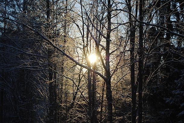 winter2014_09