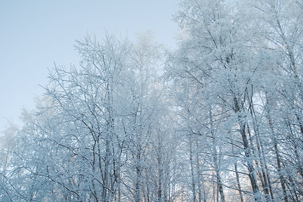 winter2014_10