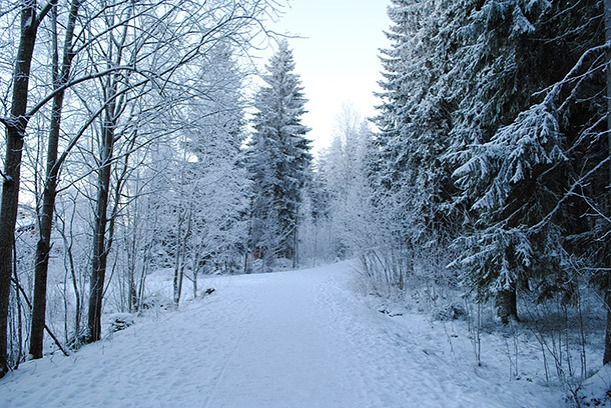 winter2014_11