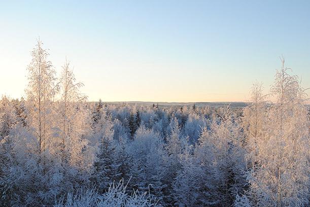 winter2014_12