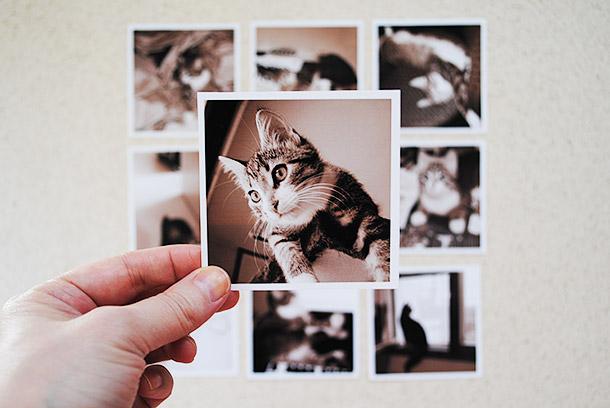 jessen_valokuvatulosteet