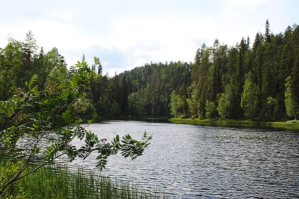 pieni_karhunkierros22