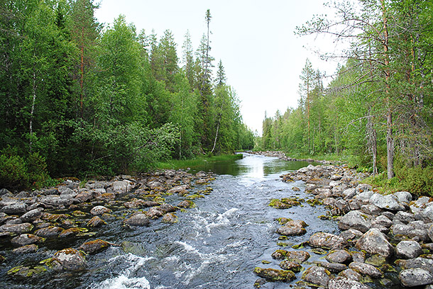 pieni_karhunkierros1