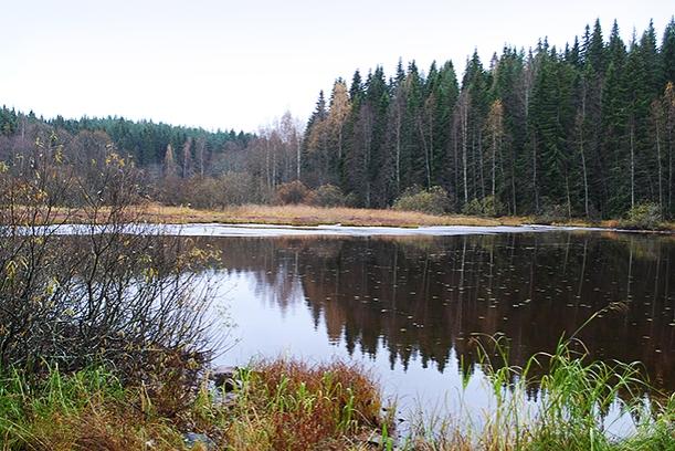 syystalvea15
